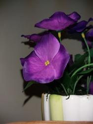 purple flower vase (cranium vase)