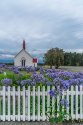 Purple flowers and a small church