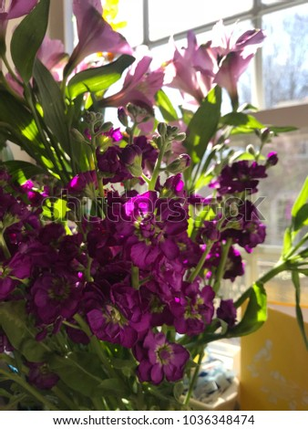 purple flowers in the vase and yellow card near to the window. #1036348474