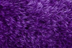Purple fur texture. Violet glamorous background.