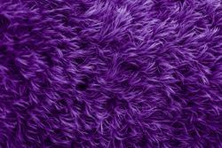Purple fur texture. Violet glamorous background.