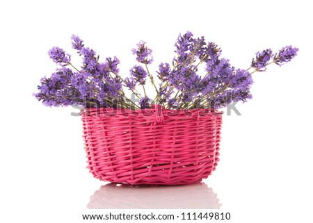 Purple lavender twigs in pink basket