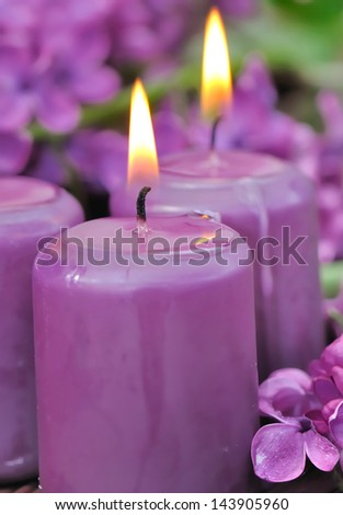 purple lilac fragrance candles among flowers