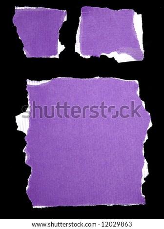 purple ripped paper - stock photo