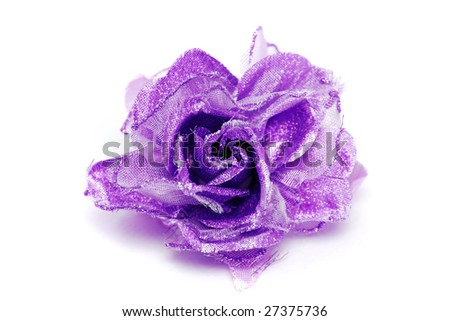 purple rose wallpaper. purple rose. attractive. beautiful