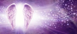 Purple Sparkle Angel Wings Message Board - pair of Angel wings on left side with a whoosh of wavy lines and sparkles on a purple background with copy space