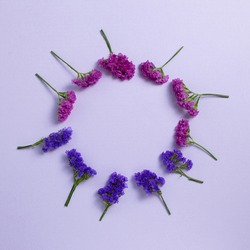 Purple statice flowers on light purple background. Floral composition, flat lay, top view, copy space
