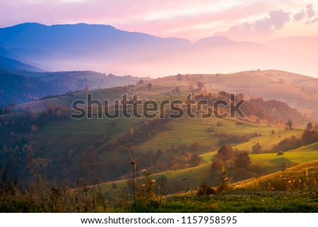 purple sunrise in foggy countryside. distant mountains in blue shade. fantastic autumn mood. #1157958595