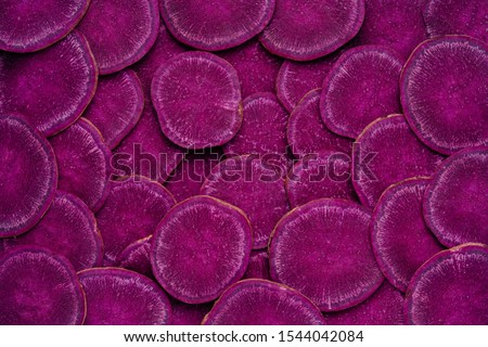 Purple Sweet Potato Sliced Abstract Texture Background. Fresh Violet Vegetable Natural Color Palette of Healthy Antioxidant Root Harvest. Autumn Vitamin Nutrition of Ipomoea Batatas for Vegan