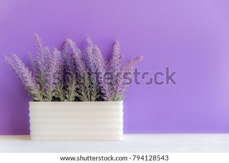 Purple wall with flowers on shelf white wood, copy space for text. Still life Concept #794128543