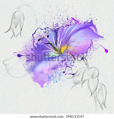 Purple wild flower, on a white background with splashes of paint and the element of the sketch, perfect as a print for clothing, bedding, cover illustration