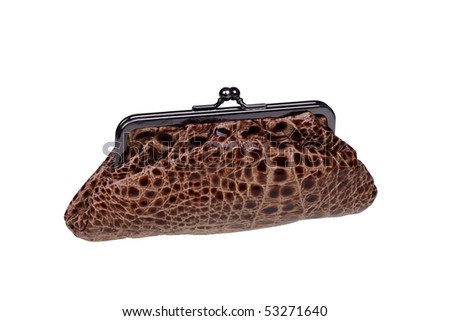 Purse. Isolated object on a white background