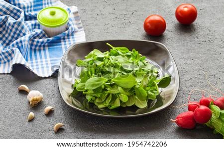 Purslane salad is a type of salad. Purslane salad is a healthy food source. It is a type of salad used in diets.
