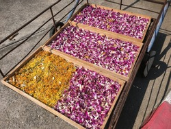 Pushcart with orchids and marigolds to be dried in the sun to preserve them as herbal ingredients for food or beverages