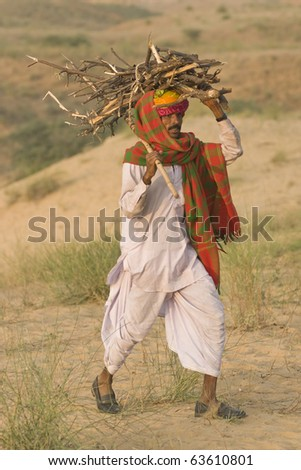 PUSHKAR, INDIA - NOVEMBER 6: Unknown camel herder carrying wood for a fire at the Pushkar Fair on November 6, 2008 in Rajasthan, India - stock photo