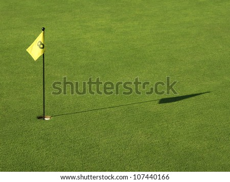 Putting green with flag no 8