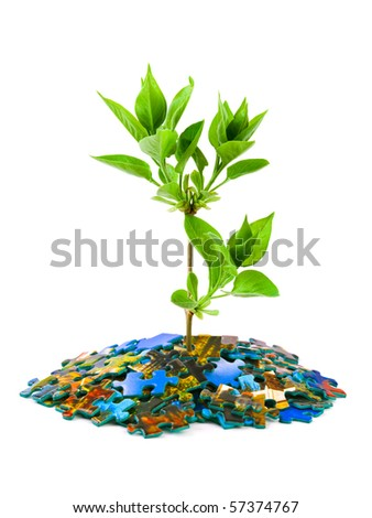 Puzzle and plant isolated on white background