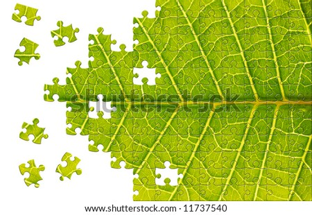 Puzzle Leaf texture close up background - stock photo