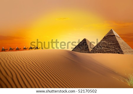 Pyramid, camel and sunset