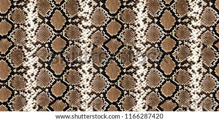 Python skin, piton texture, snake pattern, animal skin