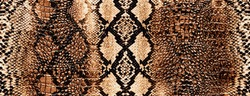 Python skin, piton texture, snake pattern, animal skin.Can be used on t-shirts, hoodies, mugs, posters and any other merchandise.