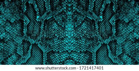 python skin  snake pattern  animal skin  Stock fotó ©