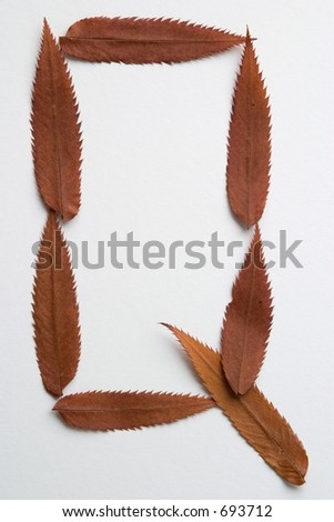 Q letter: alphabet and numbers with autumn brown red dry leaf on white background