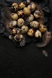 Quail eggs and feathers on black crumpled wrapping paper. A lot of spotty little eggs on a black textured background. Copy space. Healthy food.