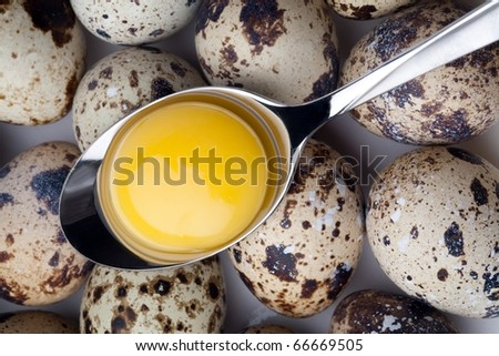 Quail eggs close-up on light background.