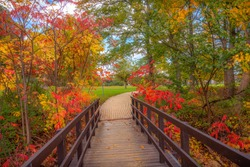 Quaint wooden bridge - a stunning gateway to the awesome fall Colors seen in a Niagara falls Park. The vibrant colours of autumn are mesmerising & give a surreal look to this magical Wonderland.