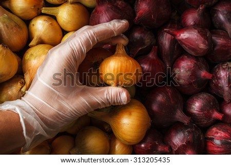 Quality control: hand in glove check onion