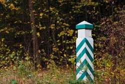 Quarterly pillar in the forest. A wooden pillar for a landmark in the forest. Forestry post. wood post with green stripes, natural background. space for text. autumn leaves in the forest
