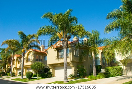 Queen Palm Trees Growing Among California Luxury Homes - stock photo