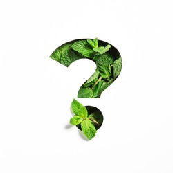 Question punctuation mark of green mint natural leaf and cut paper isolated on white. Peppermint leaves font typeface