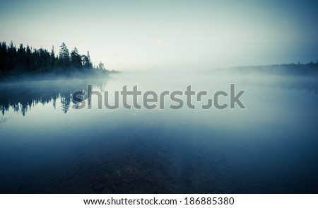 Quiet lake before dawn in the mist