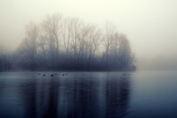 Quiet lake before dawn in the mist. Trees and lake, perfect for meditation. Mysterious and foggy night with tree silhouettes reflected in the water.