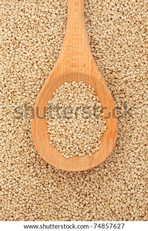 Quinoa grain in a wooden spoon and forming a background.
