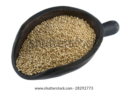 quinoa grain on a rustic, wooden scoop, isolated on white
