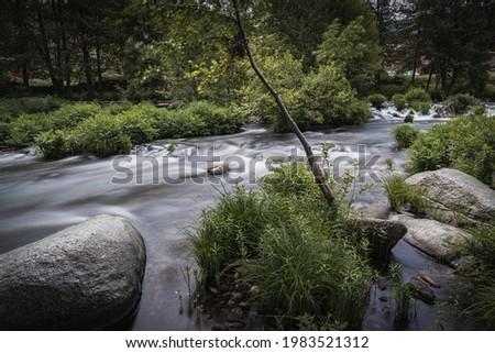 Río con vegetación en naturaleza Foto stock ©