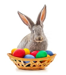 Rabbit and Easter basket on a white background.