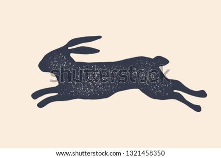 Rabbit, hare, silhouette. Vintage logo, retro print, poster for Butchery meat shop, rabbit silhouette. Logo template for meat business, meat shop. Black white silhouette rabbit. Illustration