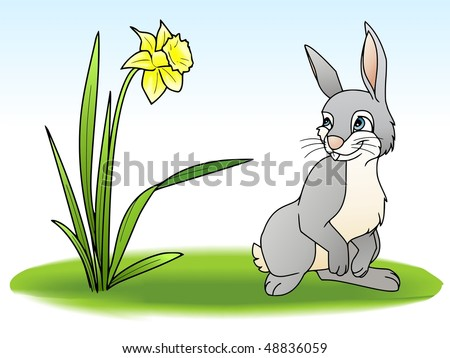 stock-photo-rabbit-on-a-meadow-48836059.jpg