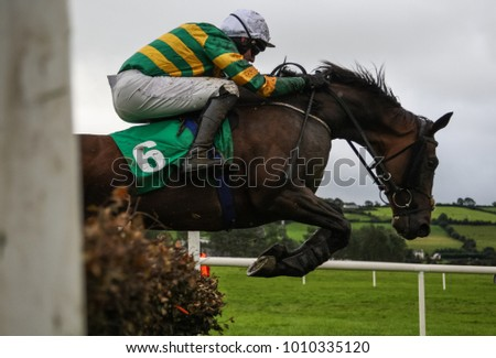 Race horse and jockey jumping over a hurdle