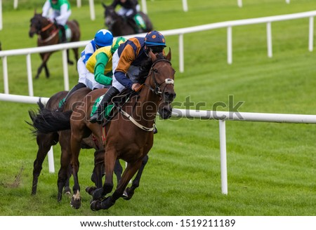 Race horses and jockeys competing for position on the final furlongs #1519211189