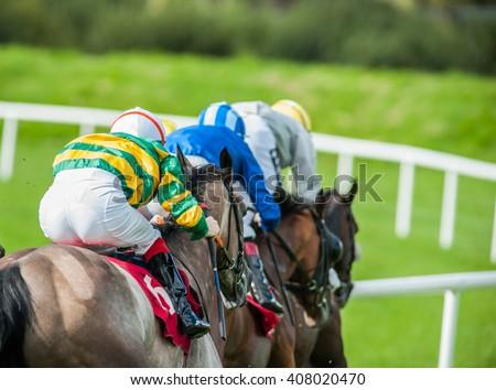 Race horses and jockeys racing down the track