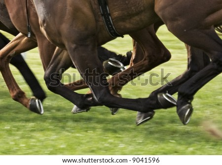 race horses galloping with all hooves clear of the ground
