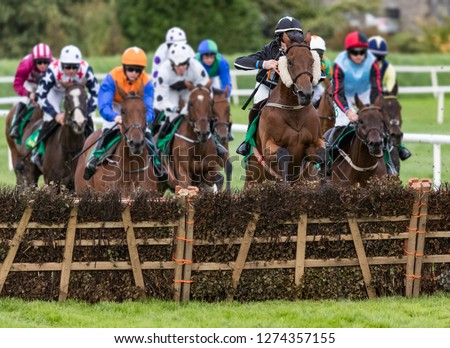 Race horses jumping hurdle #1274357155