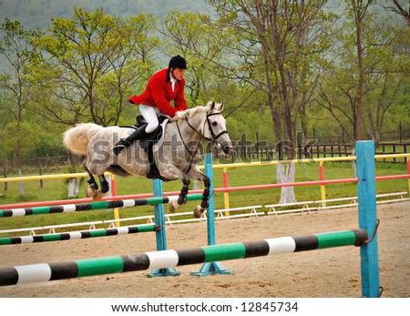 race horses jumping hurdles at speed