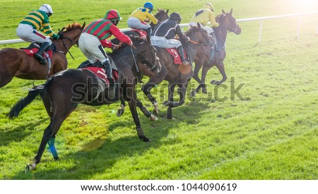 Race horses sprinting towards the finish line with sunlight lens flare effect #1044090619