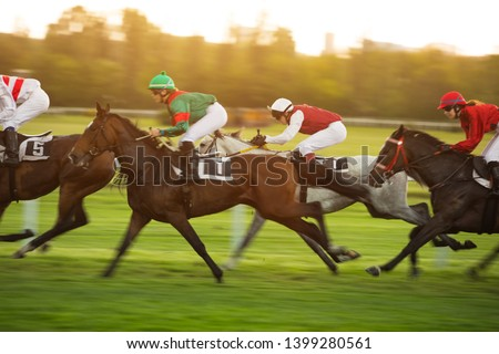 Race horses with jockeys on the home straight. Shaving effect. #1399280561